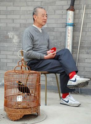 chinois013